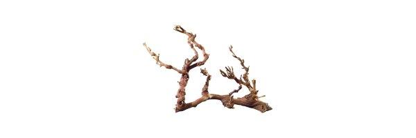 Wurzeln & Holz