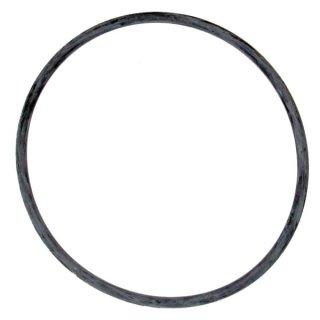 Tetra Ex 1200 - Dichtungsring (O-Ring)