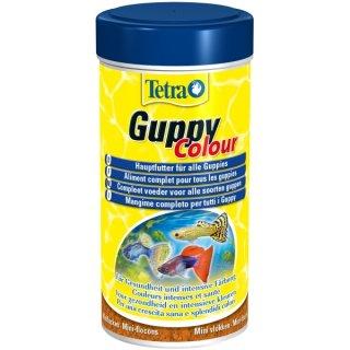 Tetra Guppy Colour - 250 ml