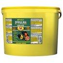 Tropical Super Spirulina Forte (36%) - 11 Liter