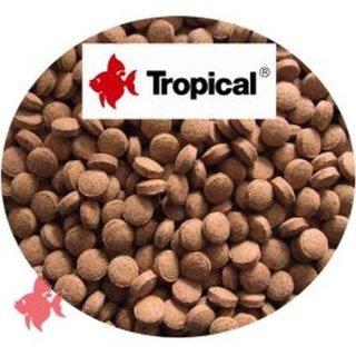 Tropical Color Tabin B Bodentabletten - 1 kg