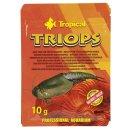 Tropical Triops - 10 g