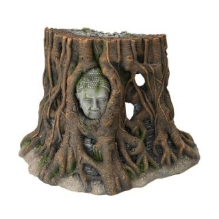 AQUA DELL Buddha Tree Thailand - XL -