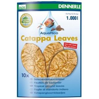 Dennerle Catappa Leaves - 10 Seemandelbaumblätter