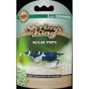 Dennerle Shrimp King Algae Pops - 40g