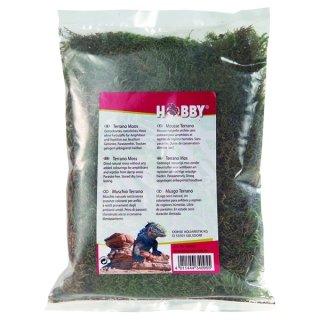Hobby Terrano Moos 100 g