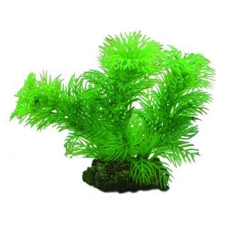 Hobby Egeria 13 cm, täuschend echt aussehende Aquarienpflanze