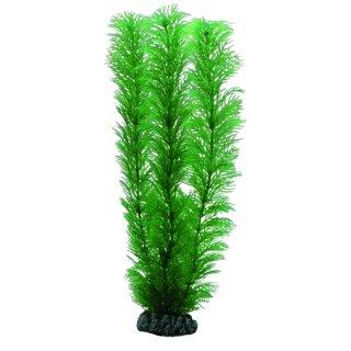Hobby Egeria 20 cm, täuschend echt aussehende Aquarienpflanze