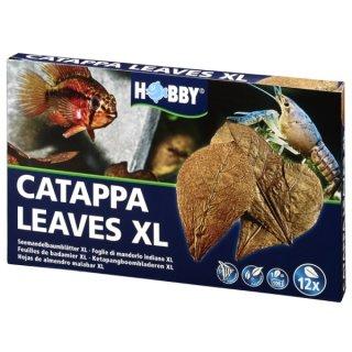 Hobby Catappa Leaves XL 12 St., Seemandelbaumblätter