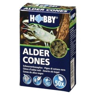 Hobby Alder Cones 50 St. Erlenzapfen