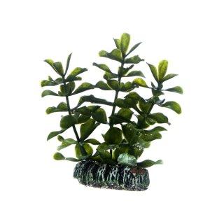 Hobby Bacopa 7 cm,  täuschend echt aussehende Aquarienpflanze
