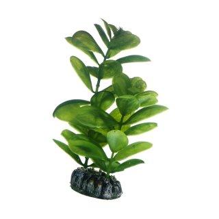Hobby Saururus 16 cm,  täuschend echt aussehende Aquarienpflanze