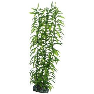 Hobby Heteranthera 34 cm,  täuschend echt wirkende Aquarienpflanze