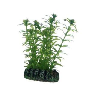 Hobby Lagarosiphon 7 cm, täuschend echt aussehende Kunststoffpflanze
