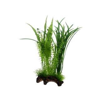 Hobby Flora Root 1, L 30 cm