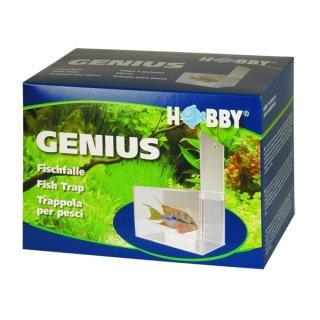 Hobby Genius, Fischfalle 21 x 13 x 15 cm